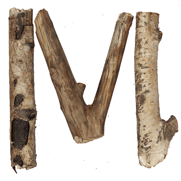 Dry Twigs Font