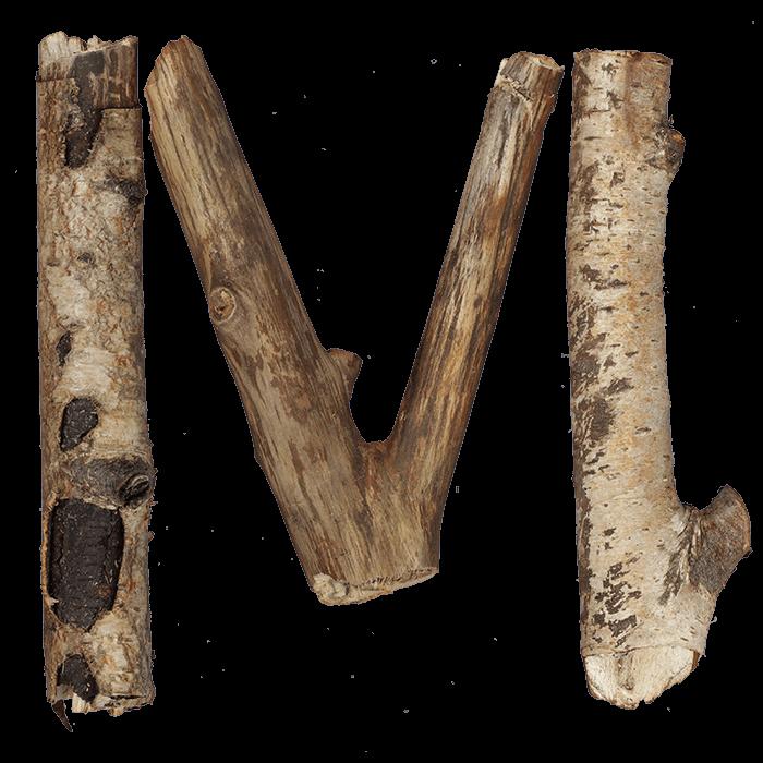 Dry Twigs Font