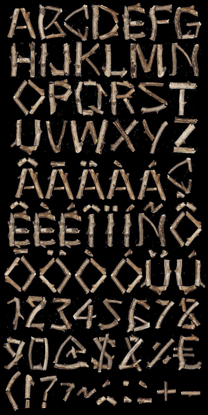 Dry Twigs wood Font