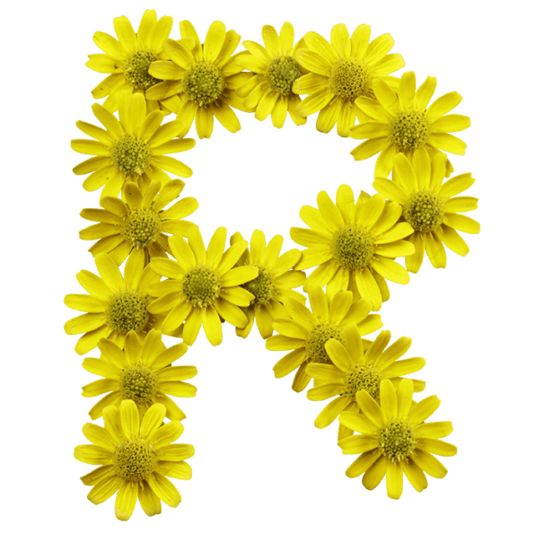 Yellow Flowers Font