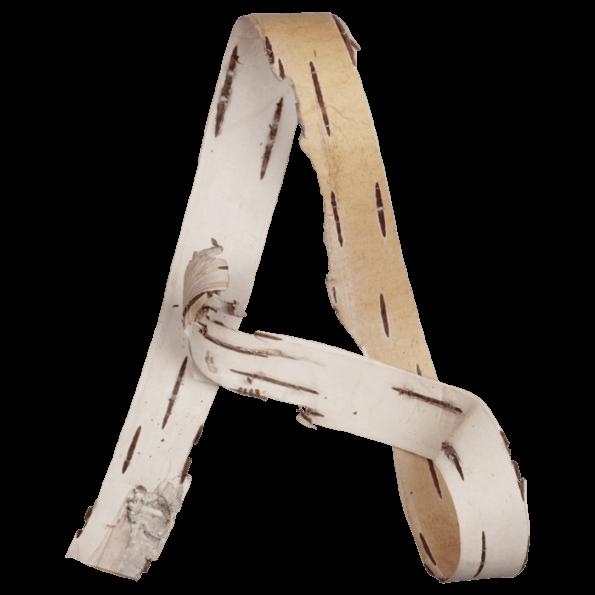 Birch Bark Font
