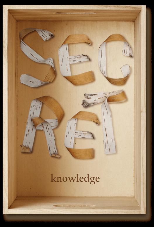 Birch Bark wood Font