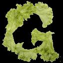 Salad Font