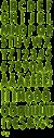 Tennis Grass Green Font