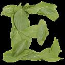 Cooper Leaf Font