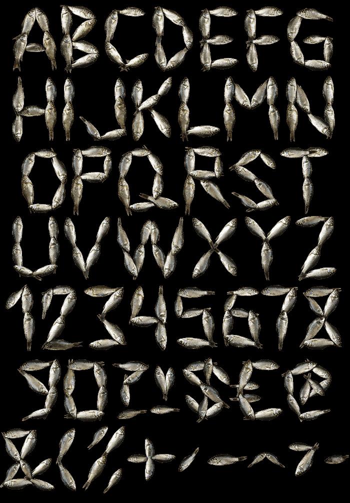 Fish sea Font