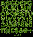 Garment green Font