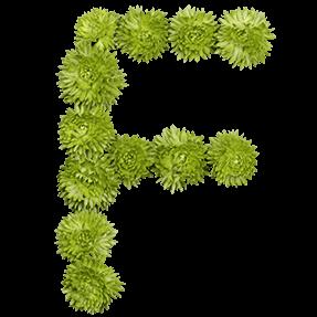 Green Flower Font