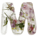 Ice and Flowers Font