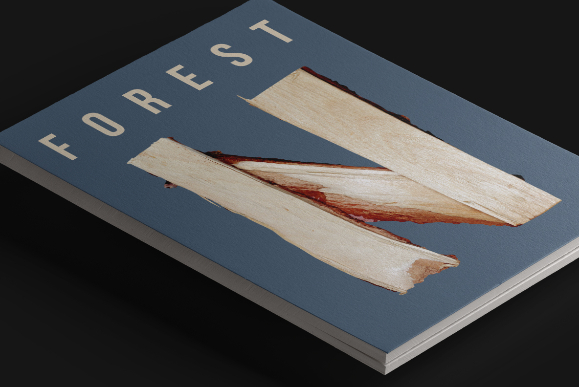 Magazine cover with Log Font. Wooden OpenType Typeface Made By Handmade Font