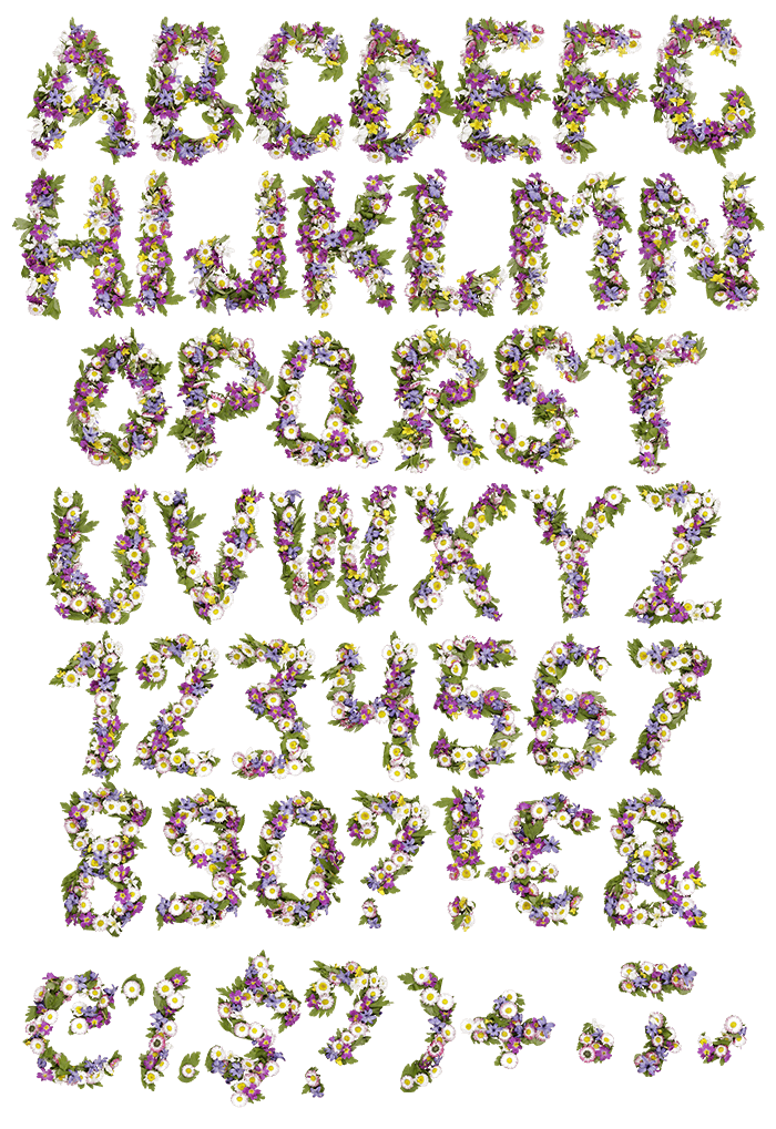 Wildflowers spring Font