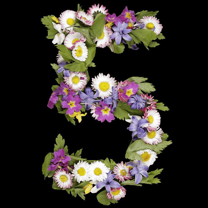 Wildflowers Font