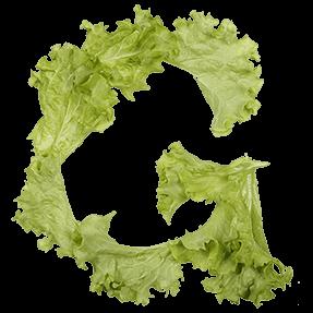 Salad Healthy Font