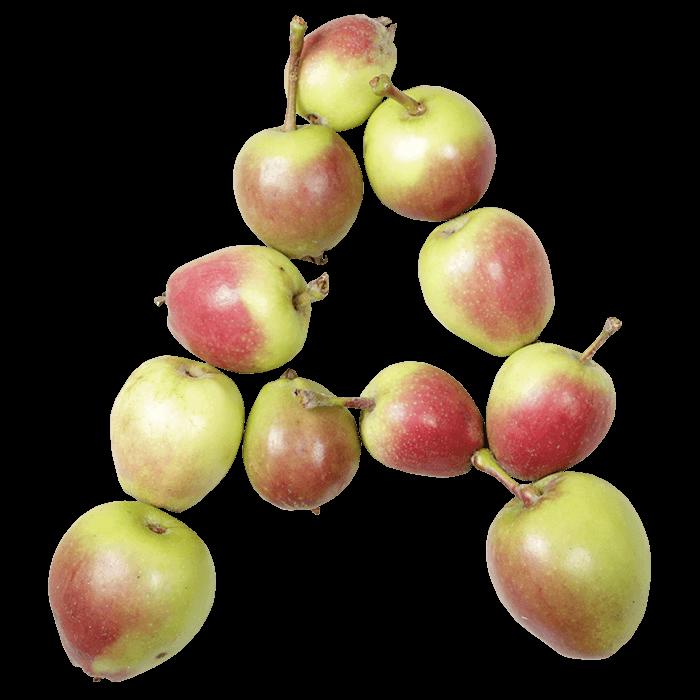 Apple font