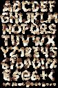 Boletus nature font