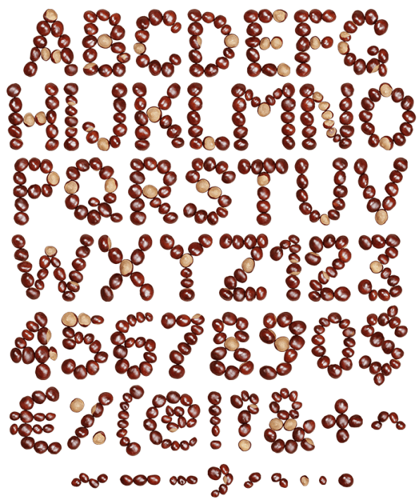 Chestnut handmade font