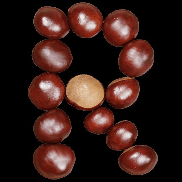 Chestnut font
