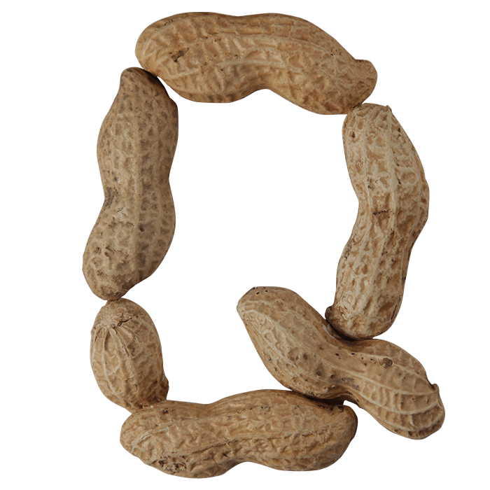Peanuts font
