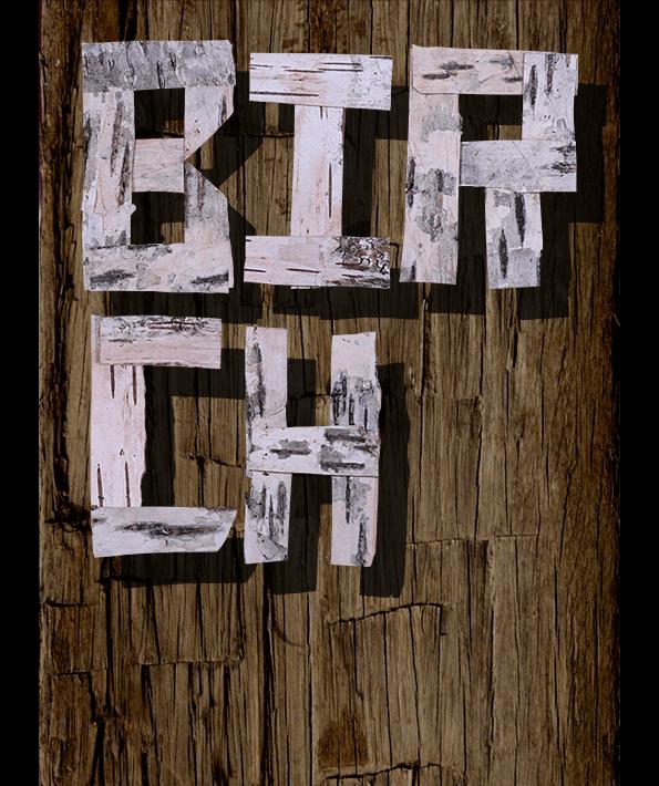 Birch wood Font