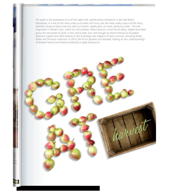 Apple fruit Font