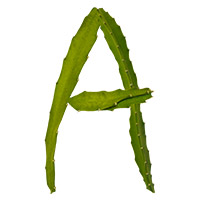 Green Cactus Font. Letter A