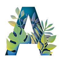 Paper Jungle Font. Letter A