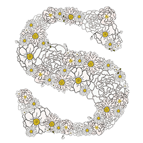 Camomile Flower Font