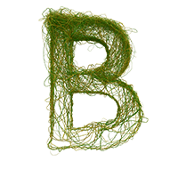 Wire Green Typeface