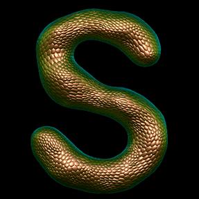 Unique Bronze Typeface