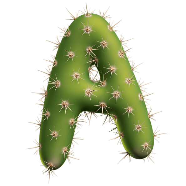 Buy Green Cactus Font And Make Funny Design About Nature