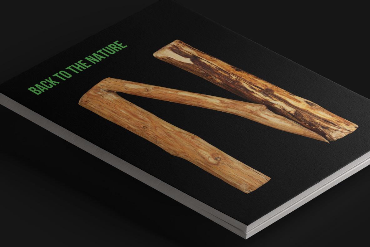 Craft Wood Font OpenType Typeface Magazine cover