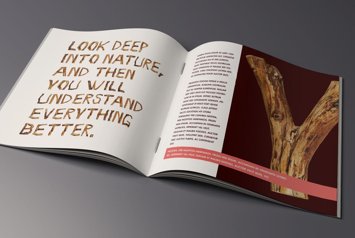 Craft Wood Font OpenType Typeface SVG open magazine