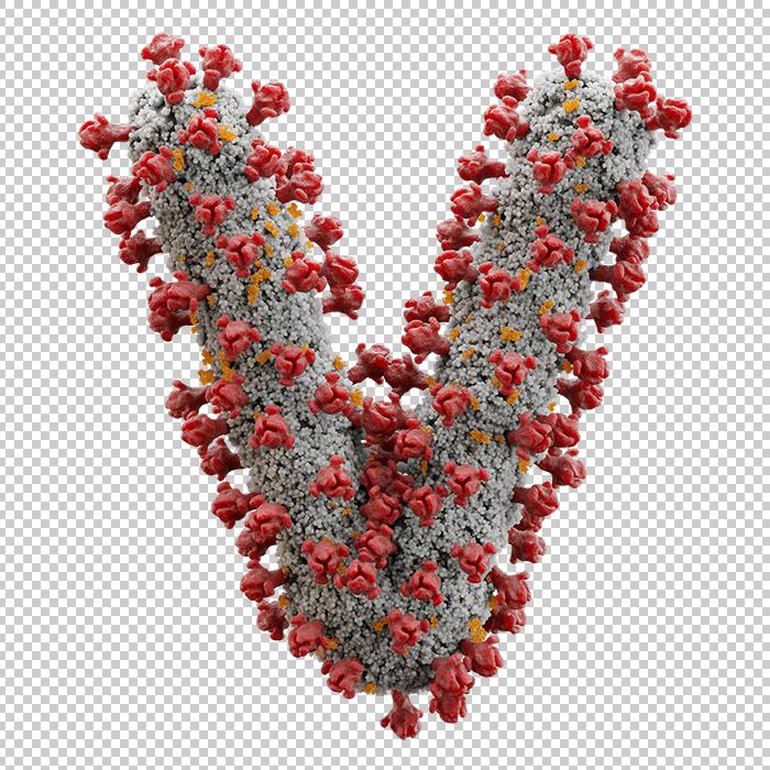 Covid-19 Font / Corona Virus Font