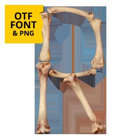 Chicken Bone Font Opentype Letter R